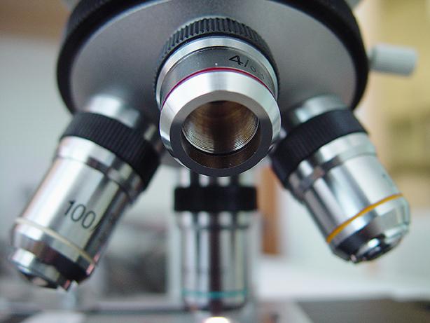 Saiba quais são os tipos de microscópios existentes