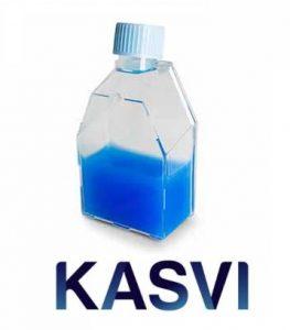 Frasco Para Cultivo Celular 182cm Com Filtro Marca Kasvi
