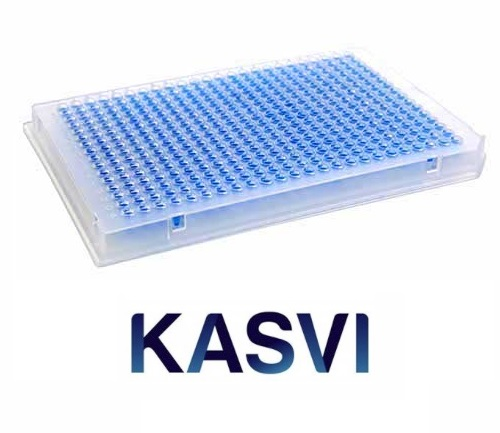 Microplaca Qpcr Com Borda 384 Poços Transparente Kasvi