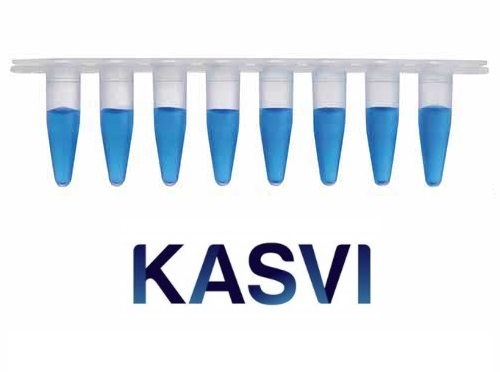Microtubo Qpcr Em Tiras 8 X 0,2ml Regular Profile Kasvi