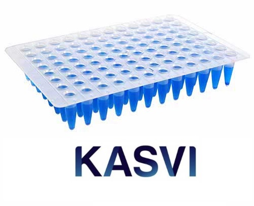 Microplaca Qpcr Sem Borda 96 Poços Regular Profile Kasvi
