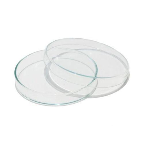 Placa de Petri de Vidro