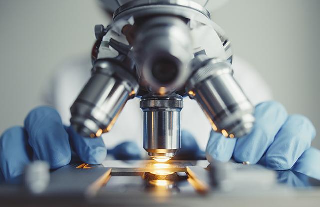 Entenda a importância de um microscópio para laboratório escolar